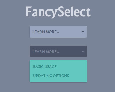 FancySelect – jQuery Plugin for Custom Select Box